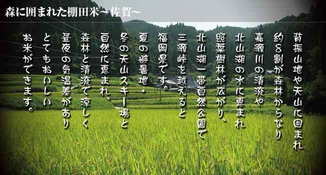 佐賀県産米